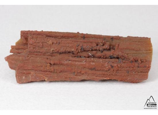 Groutite sur bois pétrifié