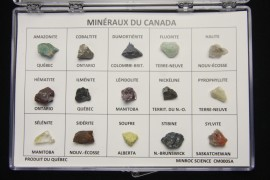 Box of 15 Minerals from Canada